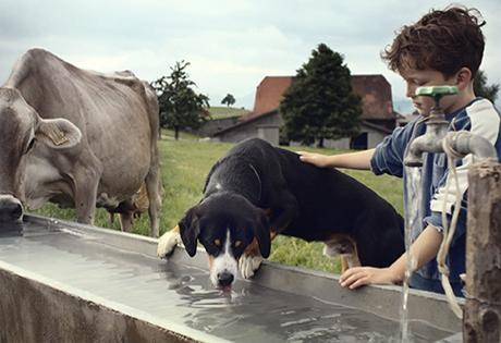 Migros Kampagne Tierwohl