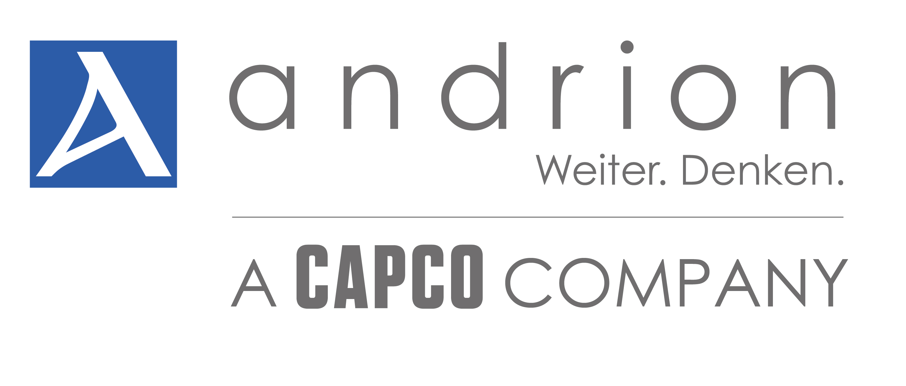 andrion&capco_FINAL
